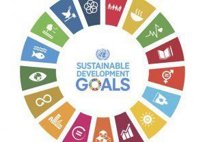 SDG-Goals